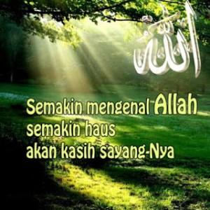 gambar dp bbm islami 12