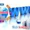 Tips Memilih Hosting Untuk Membangun Toko Online Professional